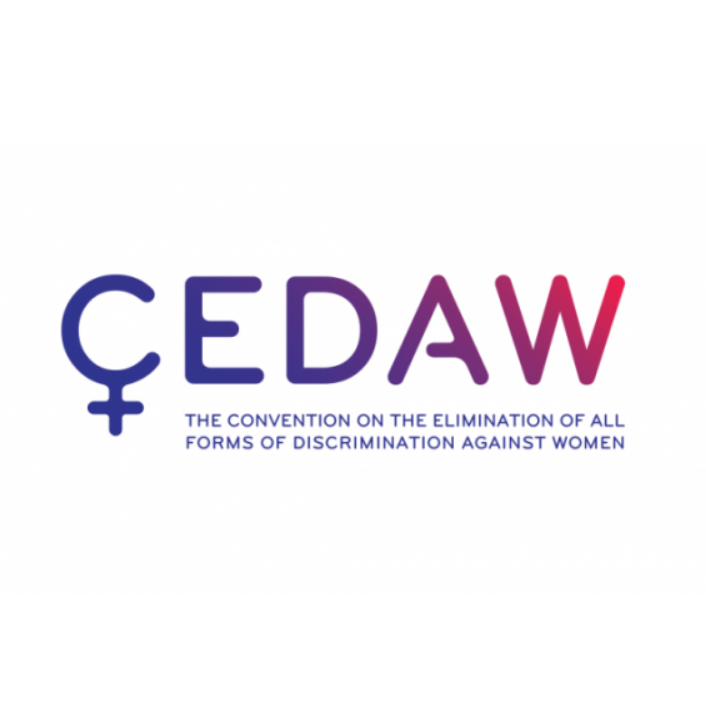 ALTERNATIVE REPORT  TO THE SIXTH PERIODIC REPORT SUBMITTED BY THE REPUBLIC OF  MOLDOVA  FOR CONSIDERATION AT THE CEDAW 75 TH SESSION WITH REGARDS TO IMPLEMENTATION OF THE GENERAL RECOMMENDATION NO. 19 ON GENDER-BASED VIOLENCE AGAINST WOMEN